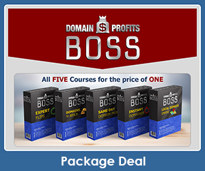 Domain Profits Boss